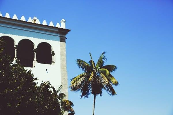 palmier-balcon-palais-de-sintra