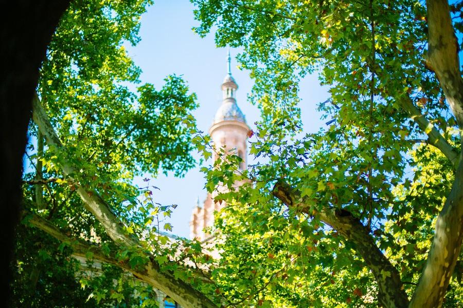 Les jardins de la Place d'Espagne à Séville