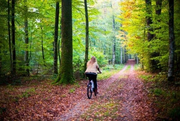 Vélo au Pavillon de Gouffern