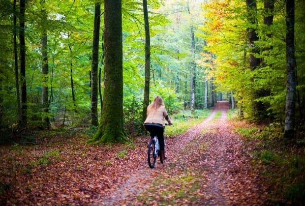 Vélo au pavillon