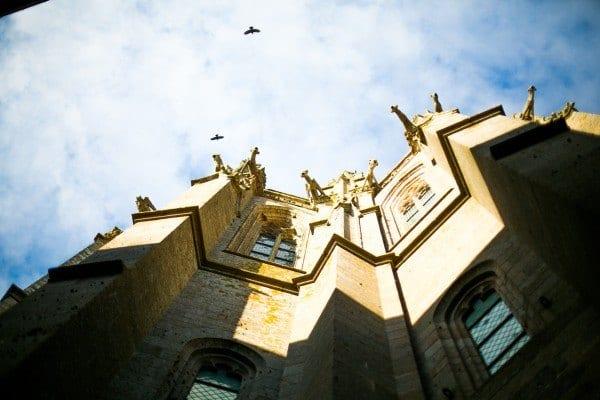 abbaye oiseaux envol