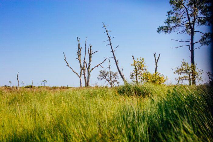 reserve naturelle ares lege