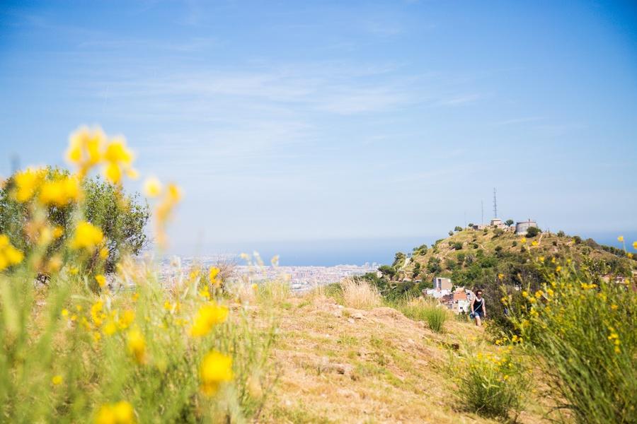 En haut du Parc Guell à Barcelone