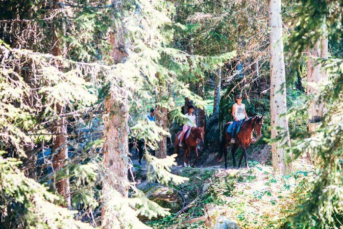 Une randonnée à cheval dans la montagne