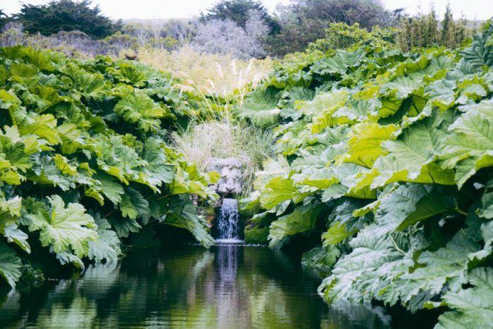 Balade dans le Jardin Botanique de Vauville