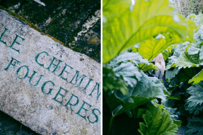le jardin botanique de vauville normandie