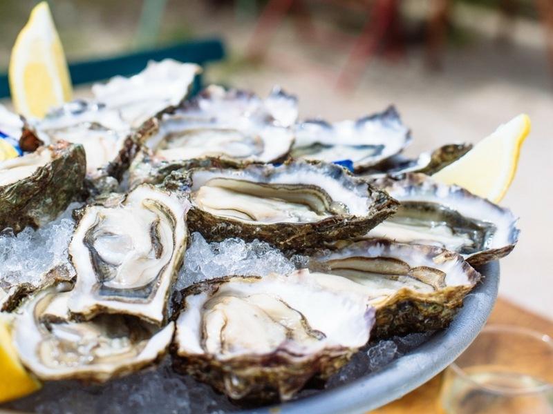 Dégustation d'huîtres au Bassin d'Arcachon