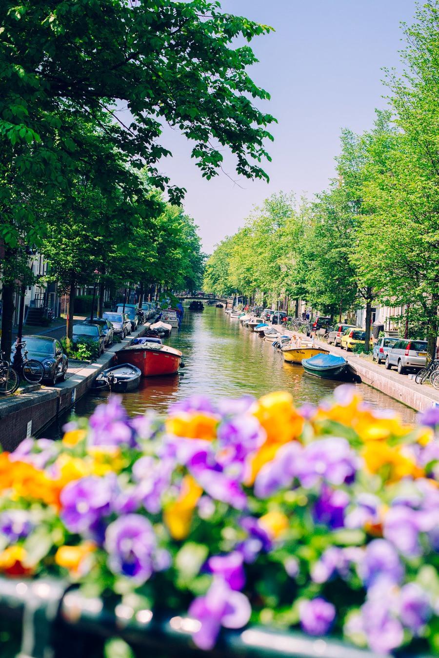 Les canaux en fleurs à Amsterdam