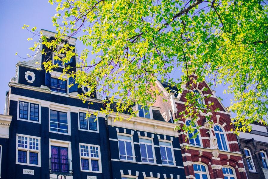 maisons-visite-amsterdam
