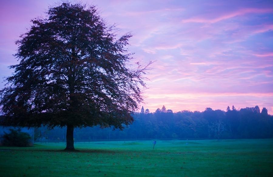 Nos 12 idées d'escapades pour un week-end à l'automne !