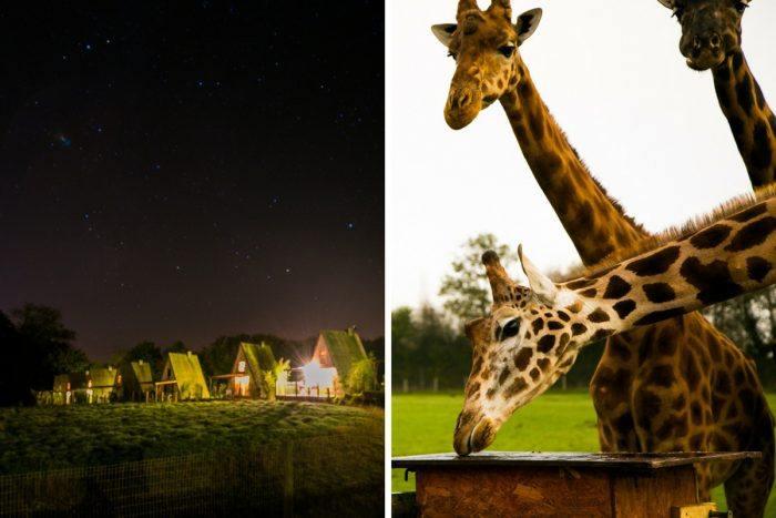 Un week-end à l'automne au Cerza Safari Lodge