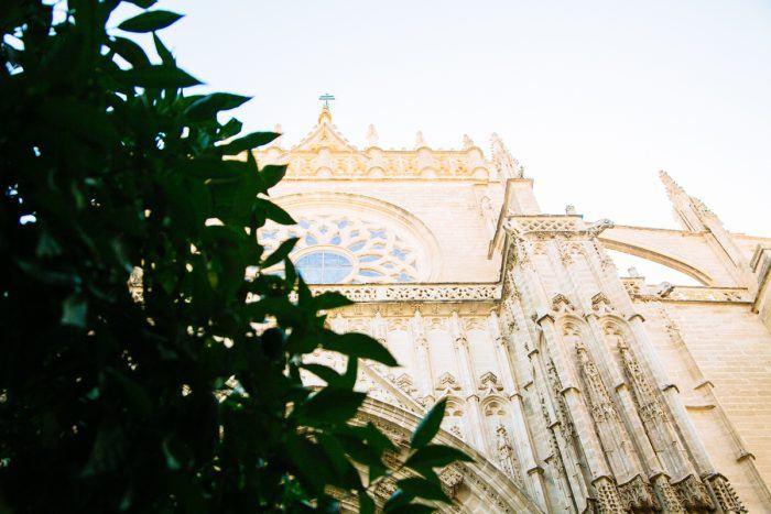 La Cathédrale vue d'en bas